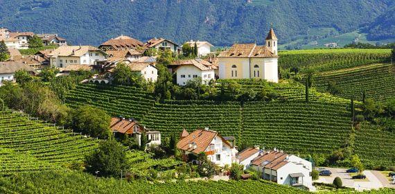 strade del vino appino