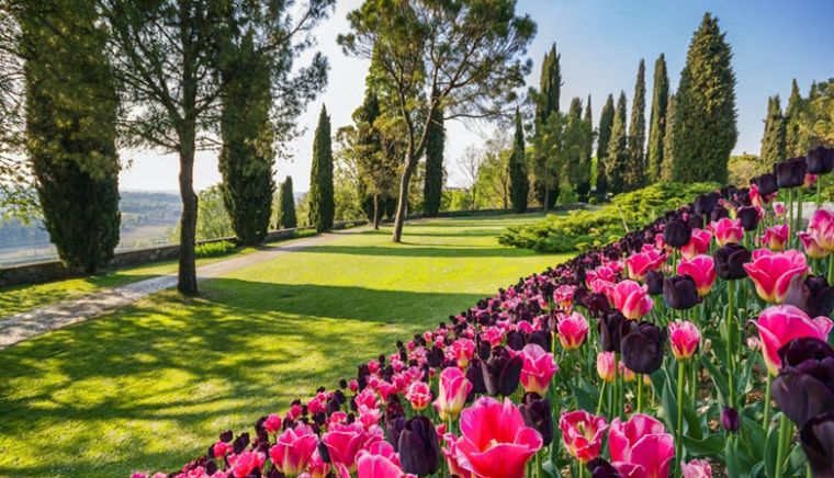 Parco Giardino Sigurtà