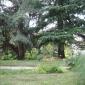 Parco delle Bertone