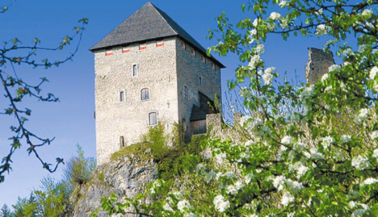 Burgruine Gallenstein