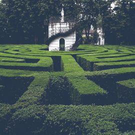 Garden/Park/Botanical garden