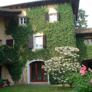 Azienda Agricola Foffani