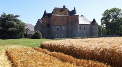 Château du Fosteau